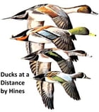 Ducks at a Distance: a Waterfowl Identification Guide, Illustrated by Bob Hines