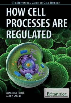 How Cell Processes Are Regulated