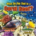 What Do You Find in a Coral Reef? 024a8b8b-a2cc-4786-b80e-91985a89aa4c