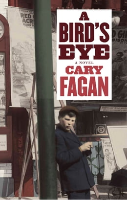 Book A Bird's Eye by Cary Fagan
