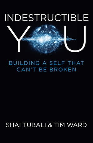 Indestructible You: Building a Self that Can't be Broken by Shai Tubali