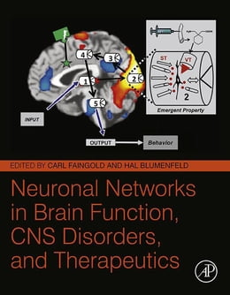 Book Neuronal Networks in Brain Function, CNS Disorders, and Therapeutics by Carl Faingold
