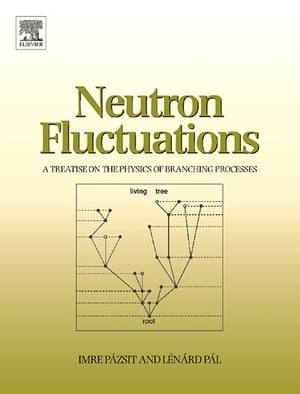 Neutron Fluctuations A Treatise on the Physics of Branching Processes