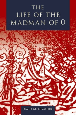 Book The Life of the Madman of U by David M. DiValerio