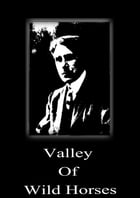 Valley Of Wild Horses by Zane Grey