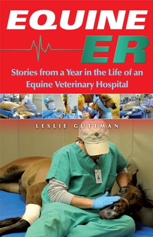 Equine ER Stories From a Year in the Life of an Equine Veterinary Hospital