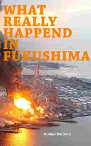 What really happened in Fukushima: Did we learn from the disaster? by Michael Wenkart