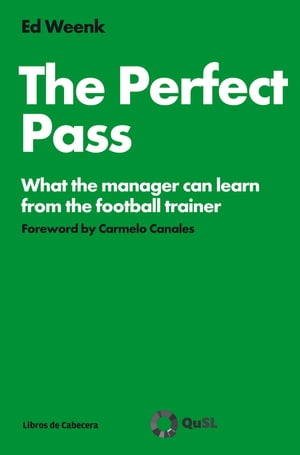 The Perfect Pass by Ed Weenk