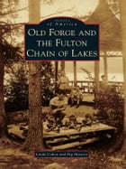 Old Forge and the Fulton Chain of Lakes by Linda Cohen