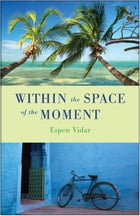 Within the Space of the Moment by Espen Vidar