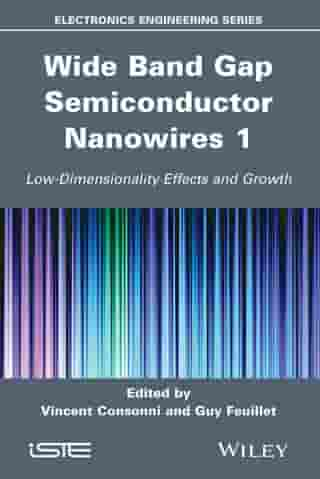 Wide Band Gap Semiconductor Nanowires 1: Low-Dimensionality Effects and Growth by Robert Baptist