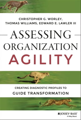 Book Assessing Organization Agility: Creating Diagnostic Profiles to Guide Transformation by Christopher G. Worley