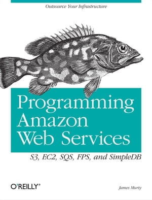 Programming Amazon Web Services: S3, EC2, SQS, FPS, and SimpleDB by James Murty