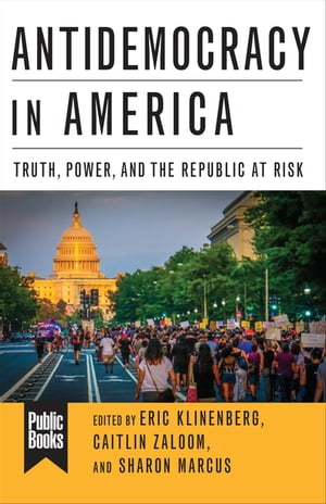 Antidemocracy in America: Truth, Power, and the Republic at Risk by Michelle Wilde Anderson
