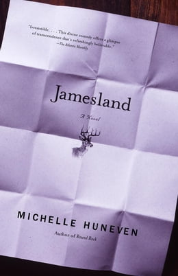 Book Jamesland by Michelle Huneven