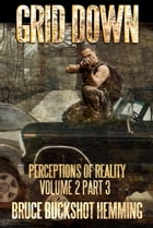 Grid Down: Perceptions of Reality Volume 2 Part 3 by Bruce Buckshot Hemming