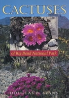 Cactuses of Big Bend National Park by Douglas B. Evans