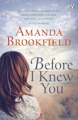 Book Before I Knew You by Amanda Brookfield