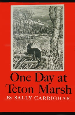 Book One Day At Teton Marsh by Sally Carrighar