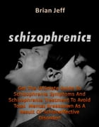 Schizophrenic! : Get The Ultimate Guide To Schizophrenia Symptoms And Schizophrenia Treatment To Avoid Total Mental Breakdown As A Result Of Schizoaff by Brian Jeff
