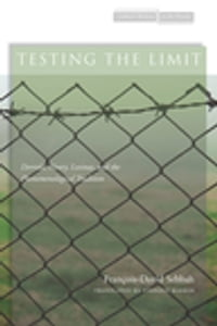 Testing the Limit: Derrida, Henry, Levinas, and the Phenomenological Tradition
