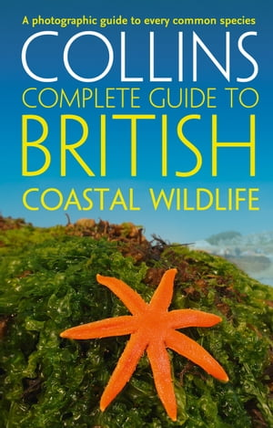 British Coastal Wildlife (Collins Complete Guides) by Paul Sterry