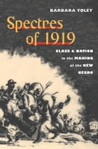 Spectres of 1919: Class and Nation in the Making of the New Negro by Barbara Foley
