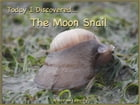 Today I Discovered The Moon Snail by Heather Stannard