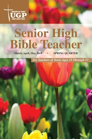 Senior High Bible Teacher
