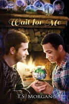 Wait for Me by T.S. Morgan
