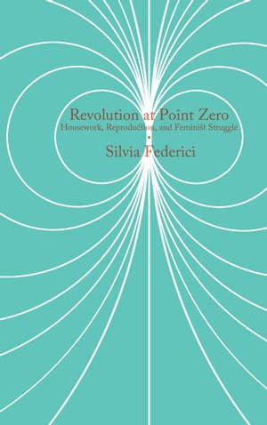 Revolution at Point Zero: Housework, Reproduction, and Feminist Struggle by Silvia Federici