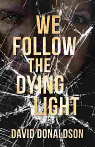 We Follow the Dying Light by David Donaldson