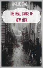 The Real Gangs of New York by Wallace Edwards