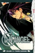 D?N?ANGEL, Vol. 13