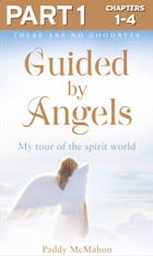 Guided By Angels: Part 1 of 3: There Are No Goodbyes, My Tour of the Spirit World by Paddy McMahon
