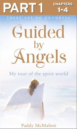 Book Guided By Angels: Part 1 of 3: There Are No Goodbyes, My Tour of the Spirit World by Paddy McMahon