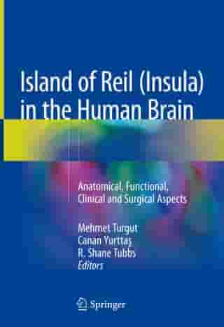 Island of Reil (Insula) in the Human Brain: Anatomical, Functional, Clinical and Surgical Aspects
