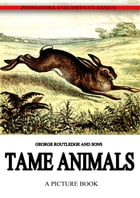 Tame Animals by George Routledge And Sons