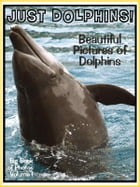Just Dolphin Photos! Big Book of Dolphin Photographs & Adorable Pictures, Vol. 1 by Big Book of Photos