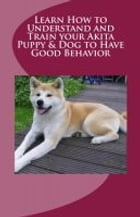 Learn How to Understand and Train your Akita Puppy & Dog to Have Good Behavior by Vince Stead