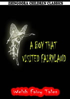 A Boy That Visited Fairyland by William Elliot Griffis