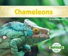 Chameleons by Grace Hansen