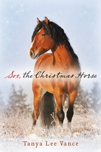 Sox, the Christmas Horse