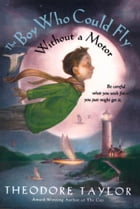 The Boy Who Could Fly Without a Motor by Theodore Taylor