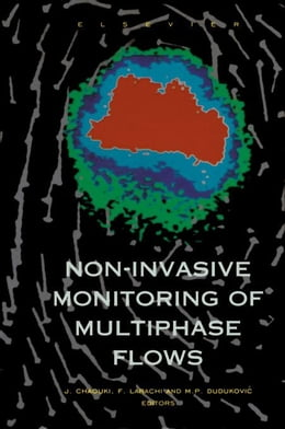 Book Non-Invasive Monitoring of Multiphase Flows by Chaouki, J.