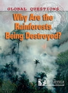 Why Are the Rain Forests Being Destroyed? by Peter Littlewood
