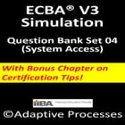ECBA V3-Simulation test - Set 4 by LN Mishra