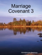 Marriage Covenant 3 by Oluwagbemiga Olowosoyo