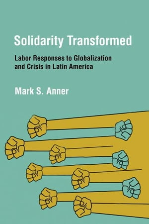 Solidarity Transformed Labor Responses to Globalization and Crisis in Latin America