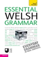 Essential Welsh Grammar: Teach Yourself
